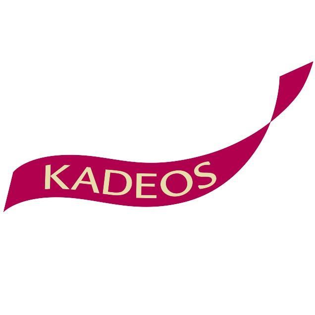 Kadeos profitez d 39 un moyen de paiement efficace - Carte cadeau castorama ...